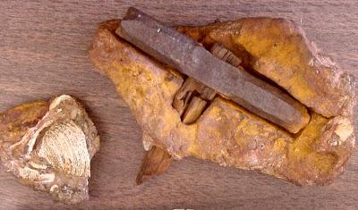 encubrimientos arqueologicos ¿una trama para controlar la historia 6 - Encubrimientos Arqueológicos ¿Una trama para controlar la historia?