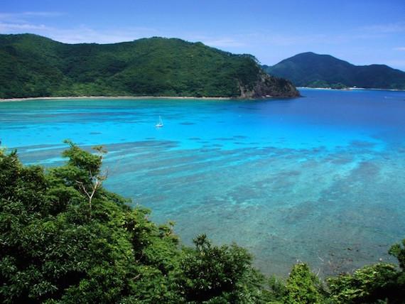 Extrañas bestias misteriosas de las islas del sur de Japón
