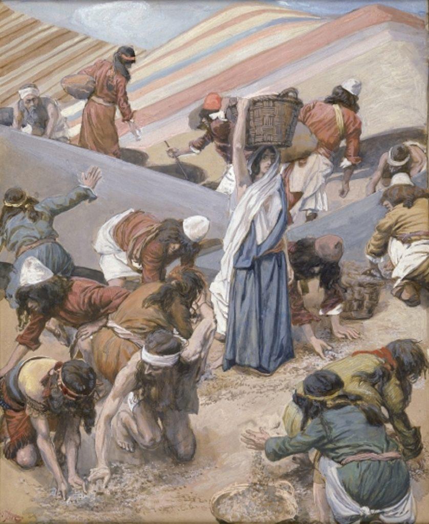 ¿Qué era el Manna, el super alimento misterioso de 'Dios' enviado desde el cielo?