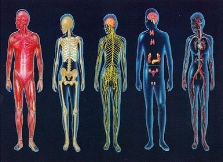 estos son los 5 niveles astrales y etericos del cuerpo - Inic.