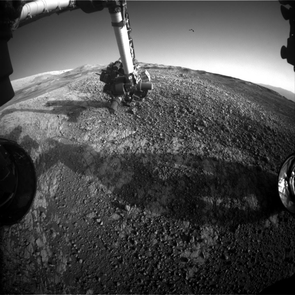 Polémica en Internet: ¿NASA expone por error un ave en Marte?