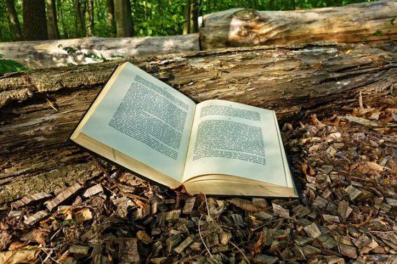 Puede leer un libro abrir una puerta paranormal?