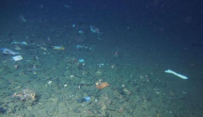 Se encontró una bolsa de plástico en el punto más profundo de la Tierra, y todos deberíamos avergonzarnos