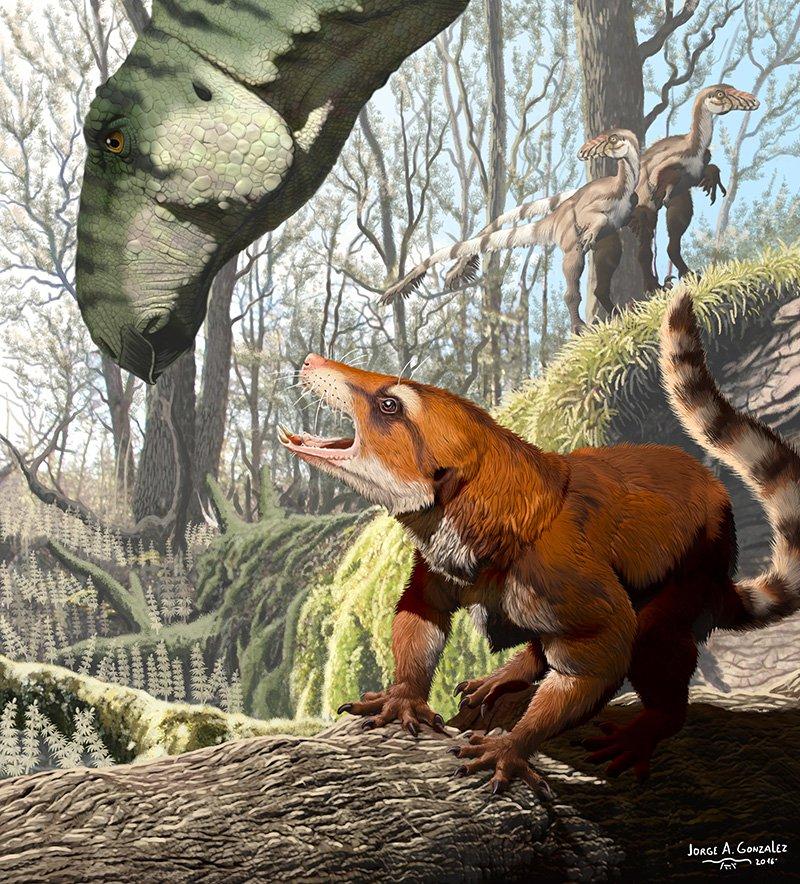 Un fósil increíble acaba de cambiar lo que sabemos sobre la división de Pangea