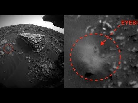 Forma De Vida Alienígena Atrapada En La NASA Rover Cam, 13 De Junio De 2018