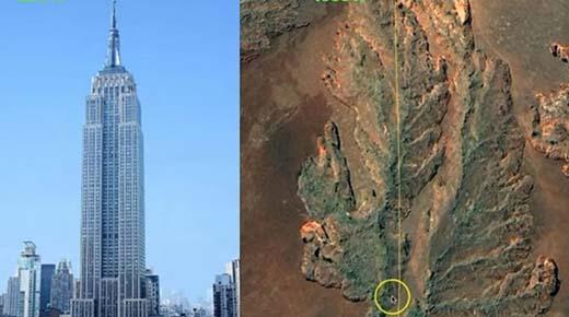 Geólogo aficionado puede haber encontrado un tocón de árbol fosilizado de 13 kilómetros de largo