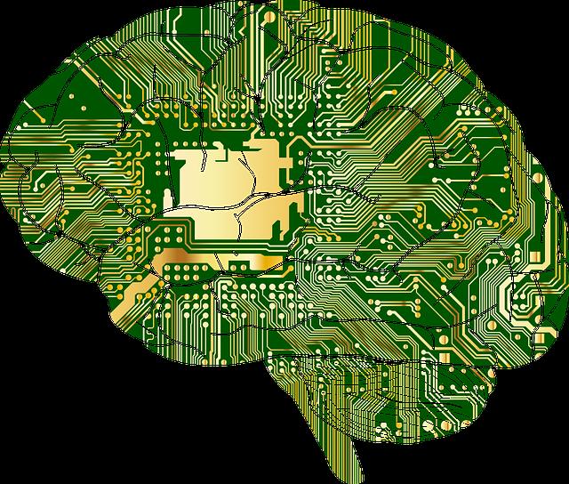 Los Investigadores Descubren El «Segundo Cerebro» Oculto En El Cuerpo Humano