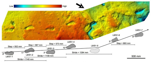 Conozca las huellas de 3,6 millones de años hallados en África