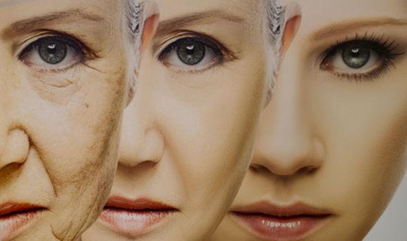 Envejecimiento tratable: Droga PARA REVERTIR el envejecimiento en el sistemainmune