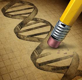 genetic engineering - El Ser Humano : Fruto de la Manipulación evolutiva.