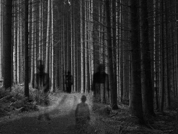 Incendios forestales misteriosos y loparanormal