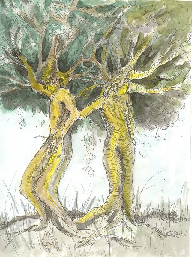 la creacion del hombre y la mujer segun la mitologia nordica - Inic.