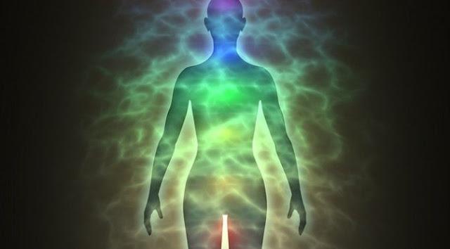 Las personas puede absorber energía de otras personas como lo hacen las plantas