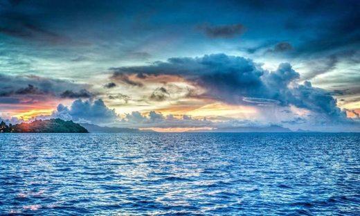 Se prevé que la acidificación del océano alcance niveles no vistos en 14 millones de años
