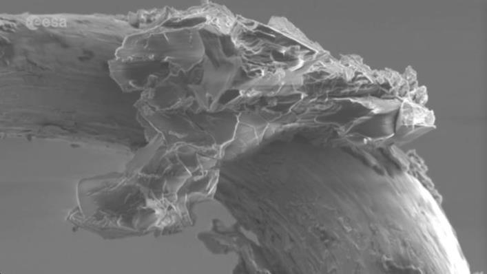 Así se ve un asteroide visto a través de un microscopio