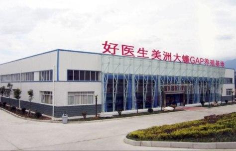 Porque china tiene fábricas enormes de cucarachas?