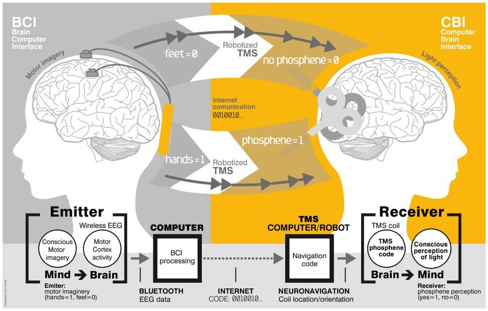 Científicos logran por primera vez transmitir pensamientos de cerebro a cerebro