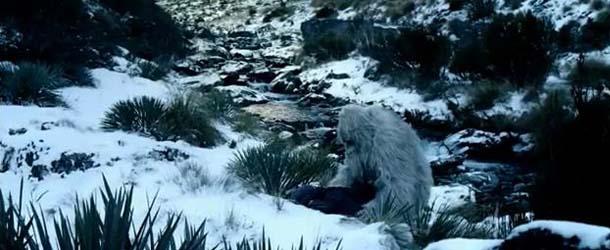 El famoso naturista Sir David Attenborough decidido a encontrar al Yeti