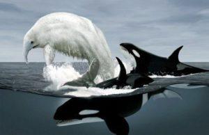 El trunko La Criatura Más Extraña que se ha visto en el Mar