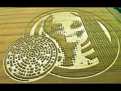 Los círculos de las cosechas, mensajes extraterrestres.