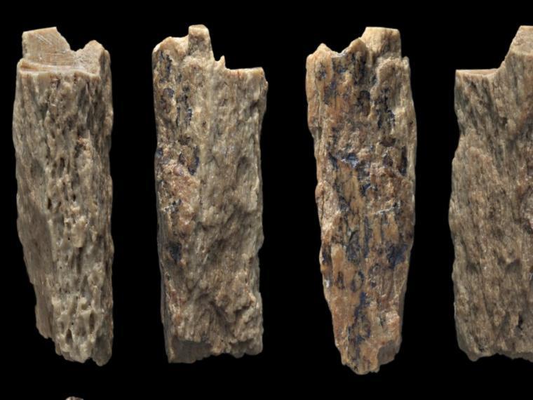 Descubren los restos del primer descendiente de un neandertal y un denisovano