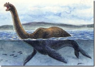 La foca de cuello largo, descrita en 1751
