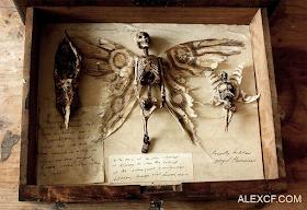 Cuerpos De Criaturas ExtrañAs Se Encontraron En El Sotano De Una Casa Antigua En Londres