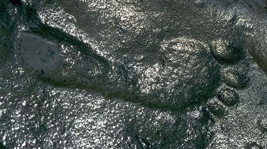 Descubren una Huella humana de hace 250 millones de años