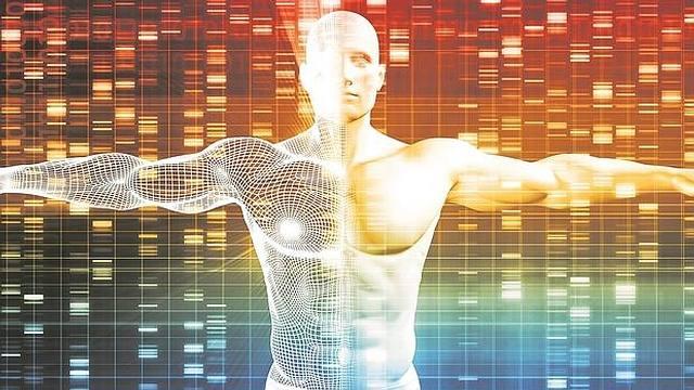 Humanos diseñados «a la carta»: Un genoma sintético en diez años