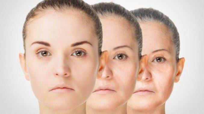 Vida eterna: Identifican los principales genes que causan el envejecimiento