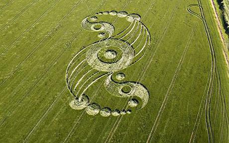 Oficial de policía vio a alienígenas blancos y altos inspeccionando un recién creado círculo de la cosecha