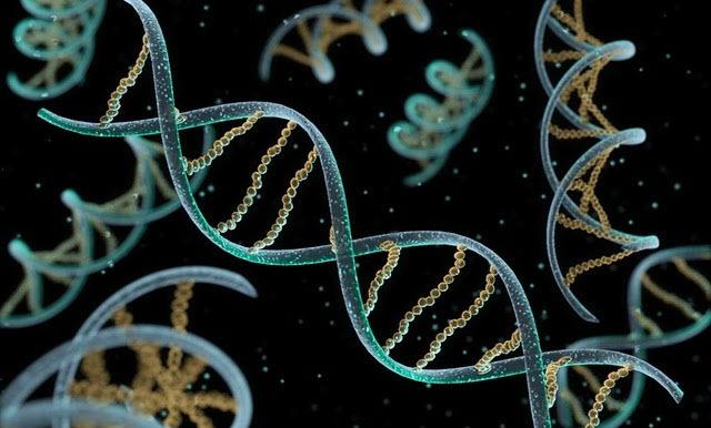 Los cristales líquidos podrían ser la clave para explicar el origen de la vida