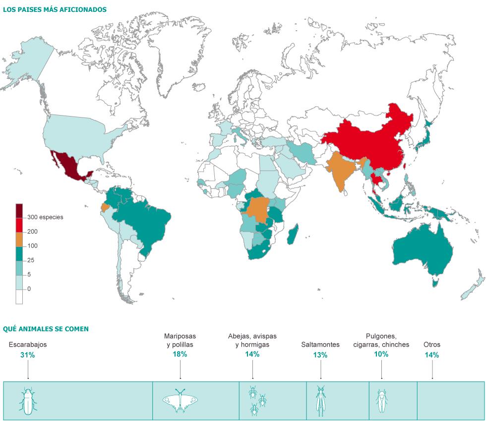 Estos son los países que consumen más insectos y su tipo