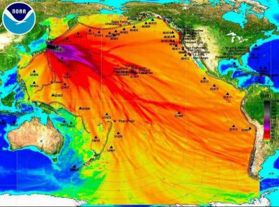 Revelan el secreto que se le ocultaba al mundo en Fukushima.