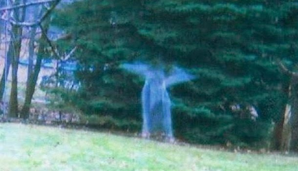 Misteriosa Figura Angelical captada en un bosque en Michigan, EE.UU.