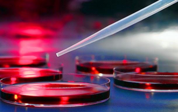 ¿Cuál será el futuro de los niños modificados genéticamente?