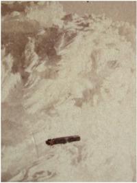 Año 1909. Las naves fantasma de Nueva Zelanda.