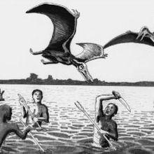Los kongamatos pterosaurios vivientes