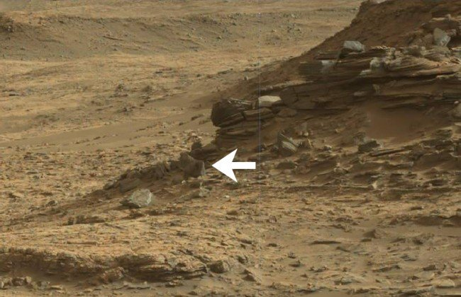 Misteriosa criatura avistada en Marte