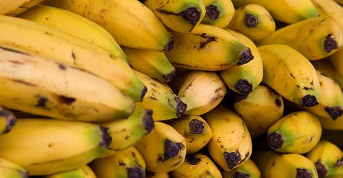 El experimento humano de Bill Gates con plátanos transgénicos