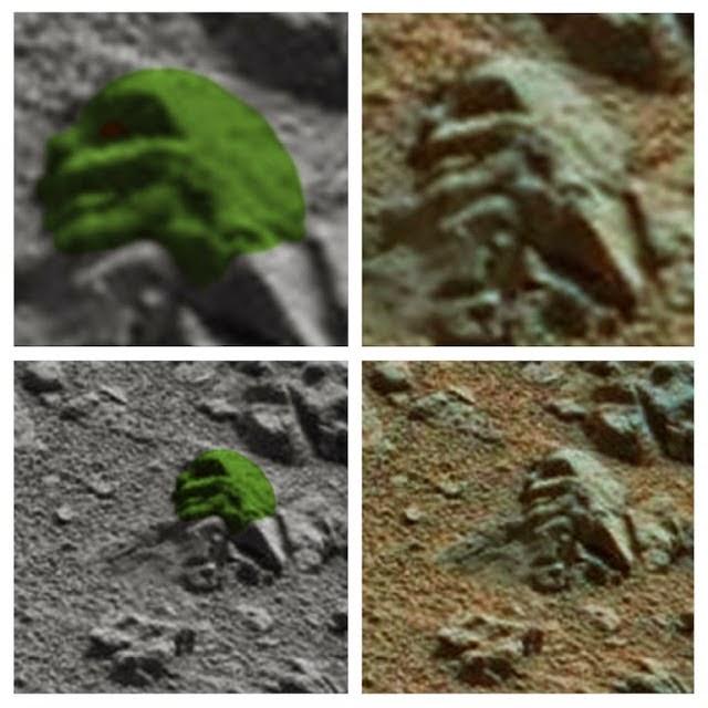 El Mars Rover descubre rostro reptiliano petrificado en Marte