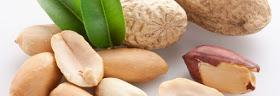 Increíble: ¿Sabías que el cacahuate te aporta casi todos los nutrientes que tu cuerpo necesita al día?