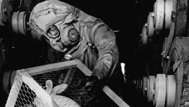 13 experimentos macabros con humanos perpetrados por EEUU