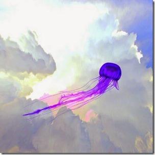 Encuentros extraños con medusas voladoras, calamares andantes y monstruosidades de pulpos