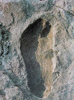 """Homo sapiens en épocas """"imposibles"""": se sigue negando la evidencia"""
