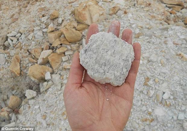 La vida inició en la Tierra 60 MILLONES de años antes de lo que se pensaba