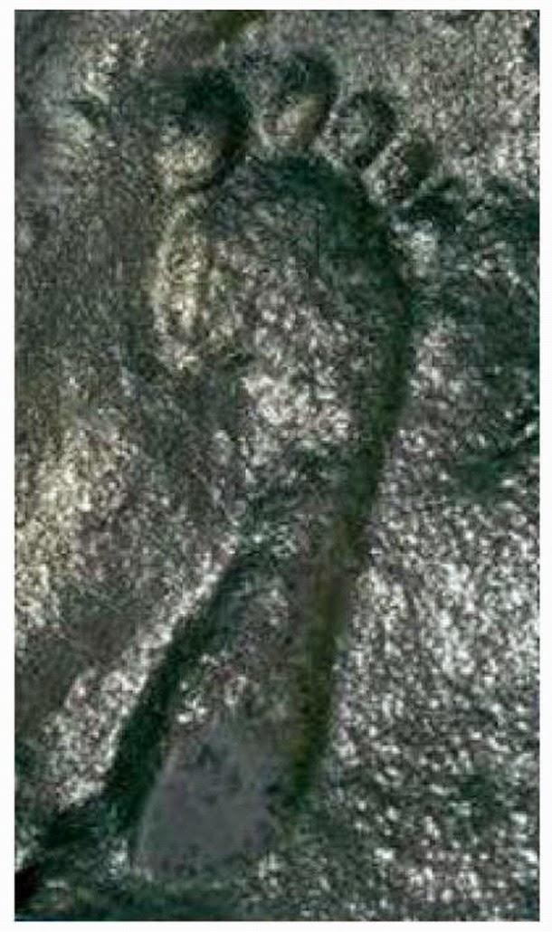 Huella humana de 290 millones de años de antigüedad tiene a los investigadores rascándose la cabeza