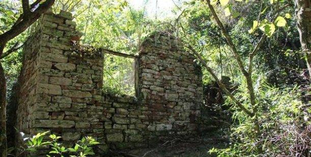 Un refugio nazi en la selva argentina