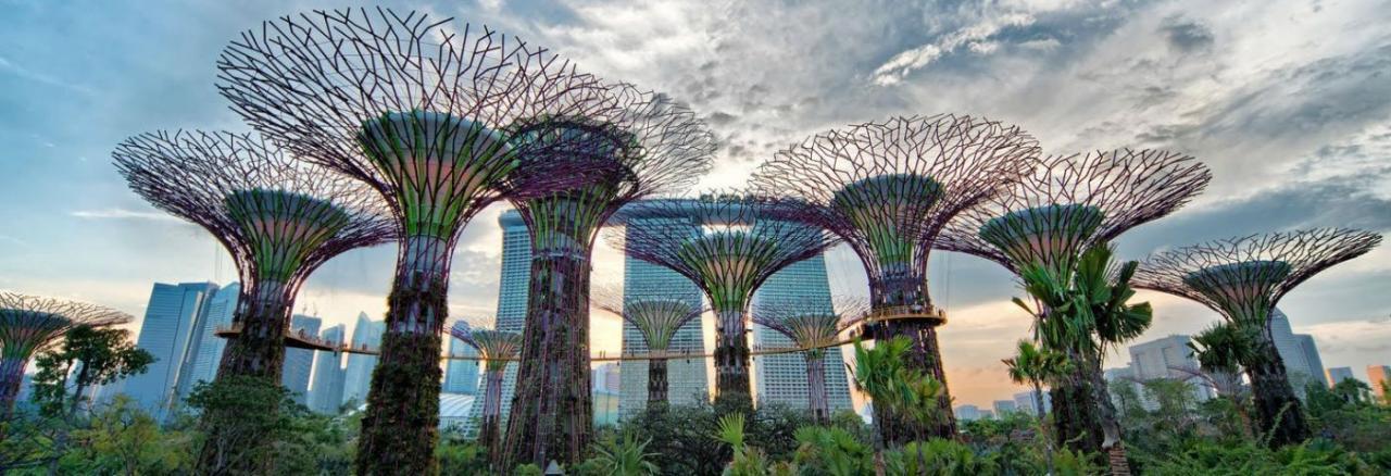 Crean en Singapur árboles artificiales de 50 m que generan electricidad