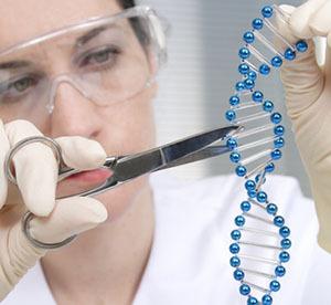 """El futuro ya está aquí: alcances y peligros de la """"Reacción en Cadena Genética"""""""